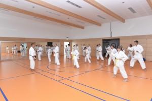2015_06 Karatelehrgang Dörfles-Esbach 001