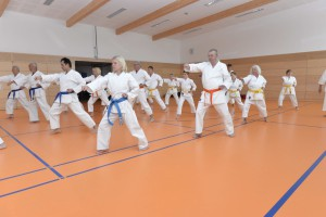 2015_06 Karatelehrgang Dörfles-Esbach 002