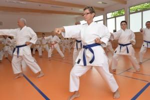 2015_06 Karatelehrgang Dörfles-Esbach 003