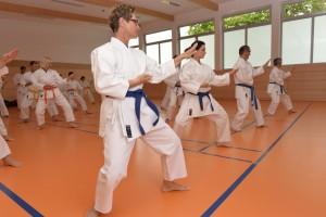 2015_06 Karatelehrgang Dörfles-Esbach 004