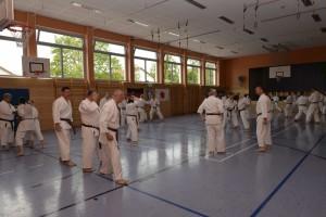 2015_06 Karatelehrgang Dörfles-Esbach 005