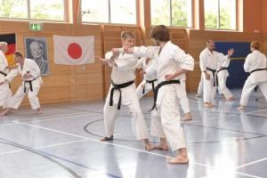 2015_06 Karatelehrgang Dörfles-Esbach 006