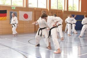 2015_06 Karatelehrgang Dörfles-Esbach 007