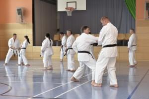 2015_06 Karatelehrgang Dörfles-Esbach 009