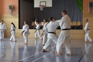 2015_06 Karatelehrgang Dörfles-Esbach 010
