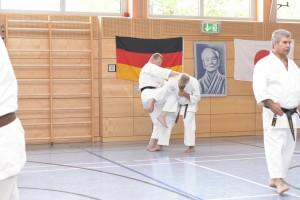 2015_06 Karatelehrgang Dörfles-Esbach 011