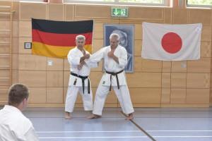 2015_06 Karatelehrgang Dörfles-Esbach 015