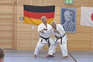 2015_06 Karatelehrgang Dörfles-Esbach 016