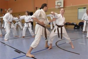 2015_06 Karatelehrgang Dörfles-Esbach 018