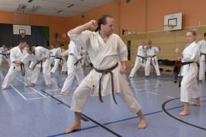 2015_06 Karatelehrgang Dörfles-Esbach 019