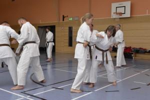 2015_06 Karatelehrgang Dörfles-Esbach 020