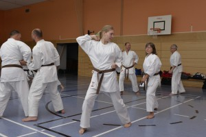 2015_06 Karatelehrgang Dörfles-Esbach 021