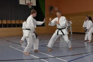 2015_06 Karatelehrgang Dörfles-Esbach 023