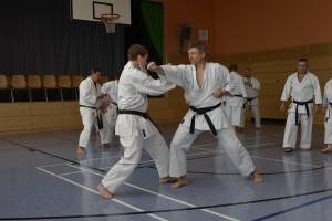 2015_06 Karatelehrgang Dörfles-Esbach 024