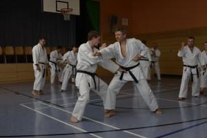 2015_06 Karatelehrgang Dörfles-Esbach 025