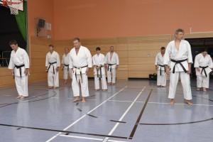 2015_06 Karatelehrgang Dörfles-Esbach 027