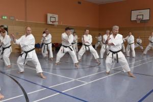 2015_06 Karatelehrgang Dörfles-Esbach 029