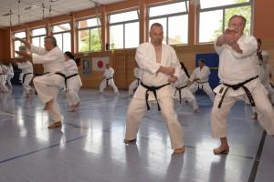 2015_06 Karatelehrgang Dörfles-Esbach 030