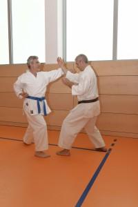 2015_06 Karatelehrgang Dörfles-Esbach 104