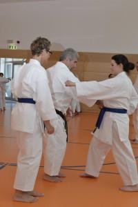 2015_06 Karatelehrgang Dörfles-Esbach 108