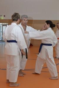 2015_06 Karatelehrgang Dörfles-Esbach 109