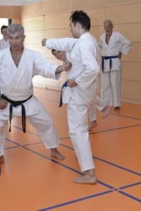 2015_06 Karatelehrgang Dörfles-Esbach 111