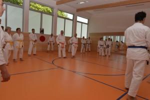 2015_06 Karatelehrgang Dörfles-Esbach 112