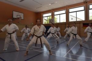 2015_06 Karatelehrgang Dörfles-Esbach 114