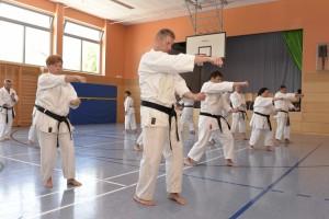 2015_06 Karatelehrgang Dörfles-Esbach 115