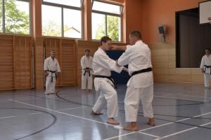 2015_06 Karatelehrgang Dörfles-Esbach 116