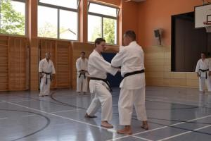 2015_06 Karatelehrgang Dörfles-Esbach 117