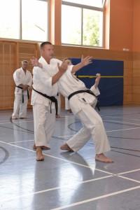 2015_06 Karatelehrgang Dörfles-Esbach 118