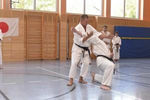 2015_06 Karatelehrgang Dörfles-Esbach 119