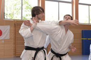 2015_06 Karatelehrgang Dörfles-Esbach 120