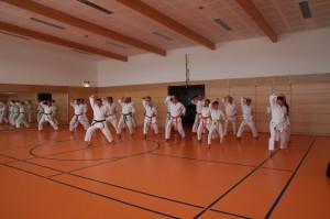 2016 04 Karatelehrgang 148