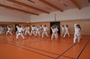 2016 04 Karatelehrgang 151