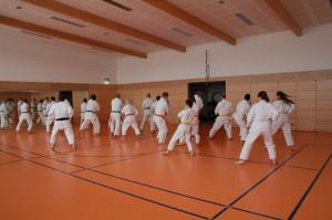 2016 04 Karatelehrgang 153