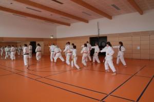 2016 04 Karatelehrgang 154