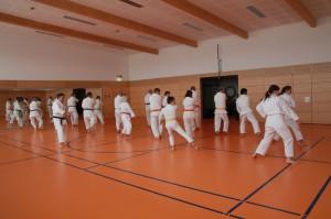 2016 04 Karatelehrgang 155
