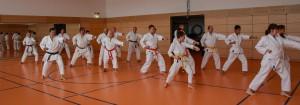 2016 04 Karatelehrgang 156