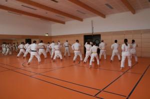 2016 04 Karatelehrgang 158