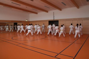2016 04 Karatelehrgang 160