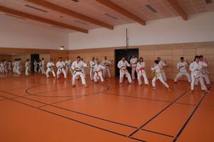 2016 04 Karatelehrgang 161