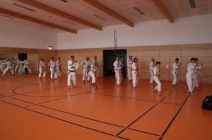 2016 04 Karatelehrgang 163