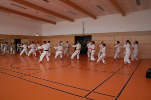 2016 04 Karatelehrgang 164