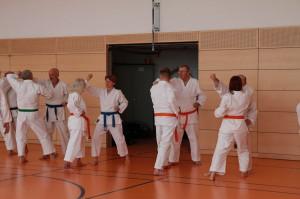 2016 04 Karatelehrgang 170