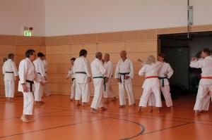 2016 04 Karatelehrgang 173
