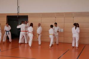 2016 04 Karatelehrgang 174