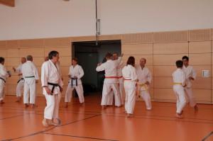 2016 04 Karatelehrgang 175