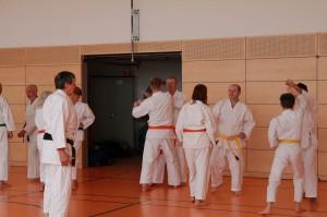 2016 04 Karatelehrgang 176